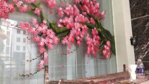 Vẽ tranh kính trang trí tết hoa đào công ty căn hộ