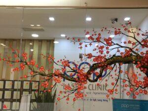 Vẽ tranh kính trang trí tết hoa đào văn phòng công ty